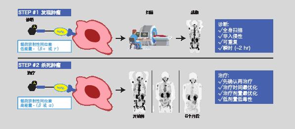 NanoMab technology 3