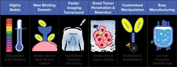 NanoMab Advantages